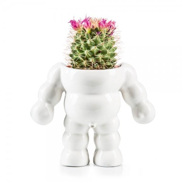 Donkey - King Cactus - Blumentopf - Porzellan - ca. 11x14x8cm